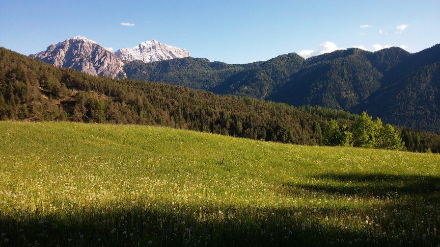 Tyrolska łąka